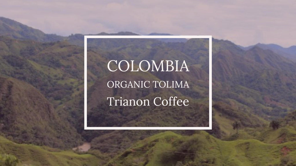 New Organic Microlot: Colombia Tolima Saint Peters Coffee