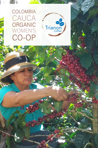 Colombia Organic Cauca Women's Co-op Trianon Coffee