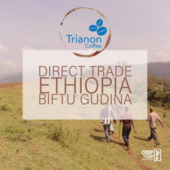 Ethiopia Biftu Gudina Direct Trade Coffee