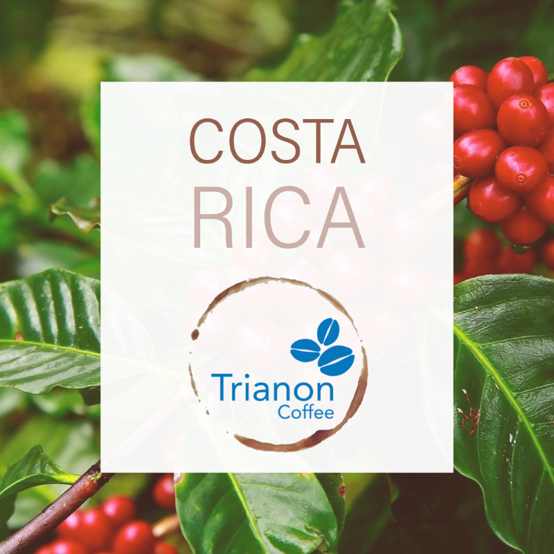 Costa Rica Coffee To Your Door