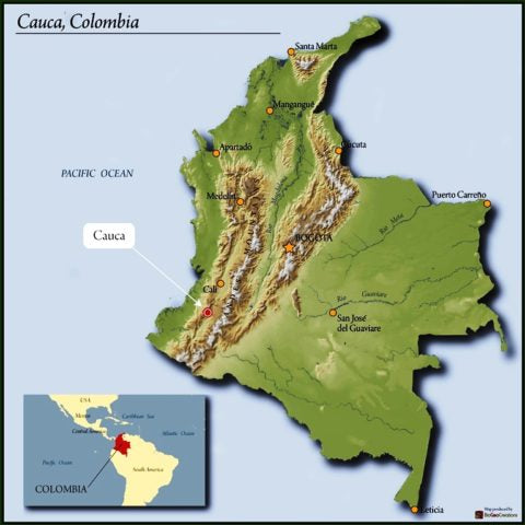 Decaf Colombia