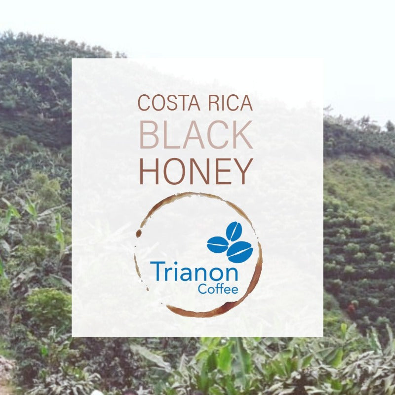 Costa Rica Black Honey Premium Coffee Home Delivery