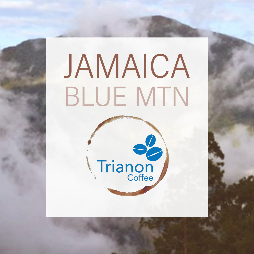 Jamaica Blue Mountain
