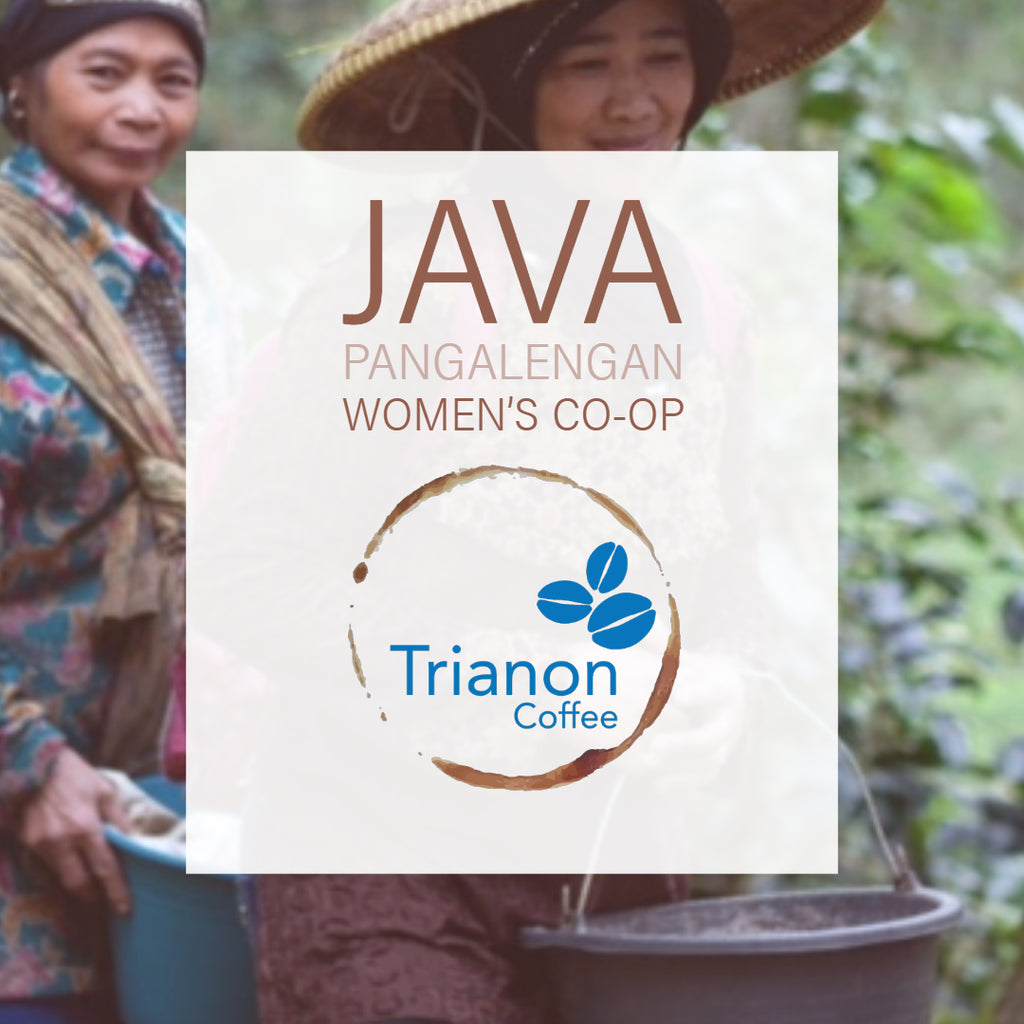 Java Pangalengan Women's Cooperative
