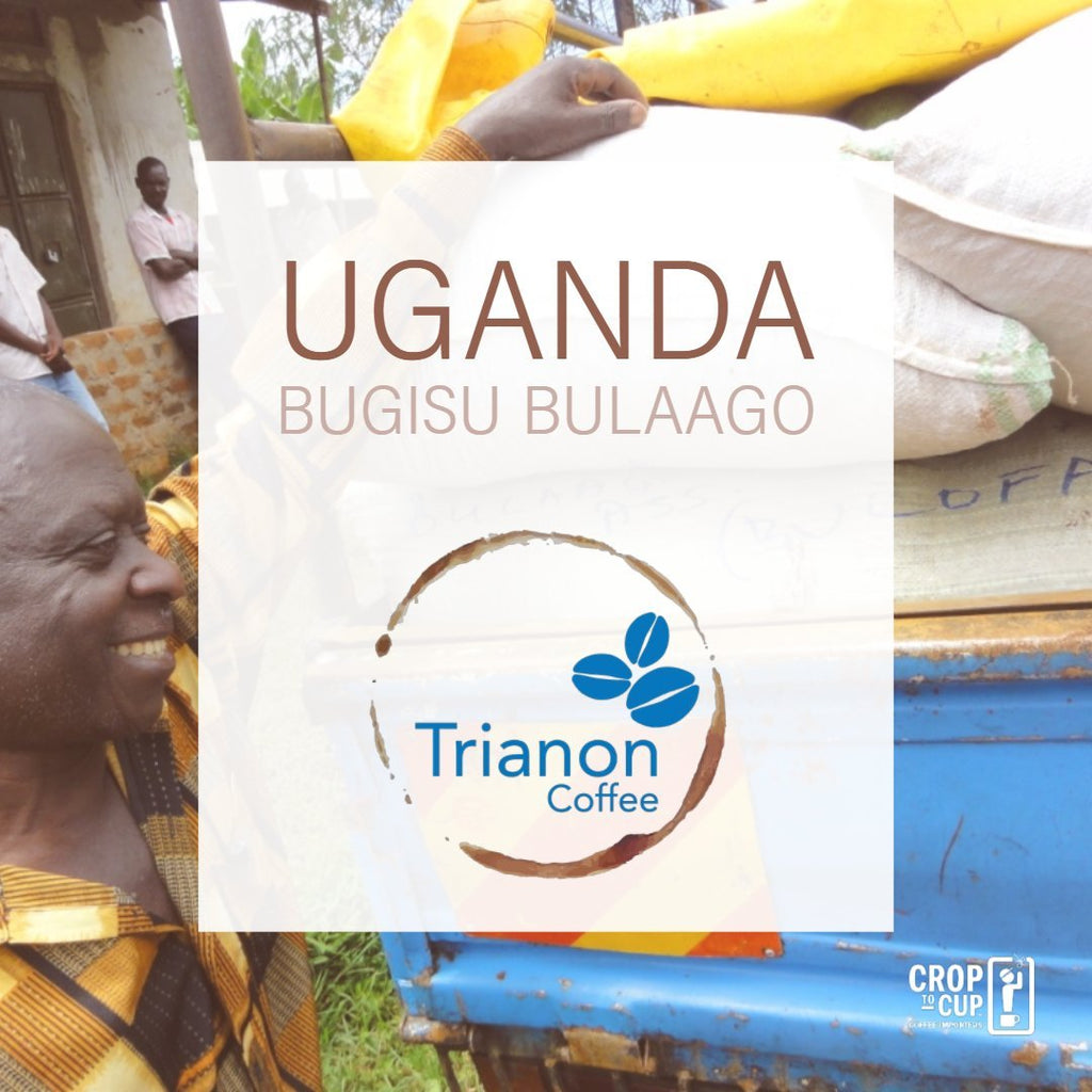Uganda Bugisu Bulaago Trianon Coffee square product image