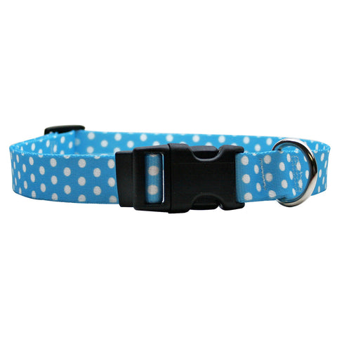 Yellow Dog - New Blue Polka Dot Collar