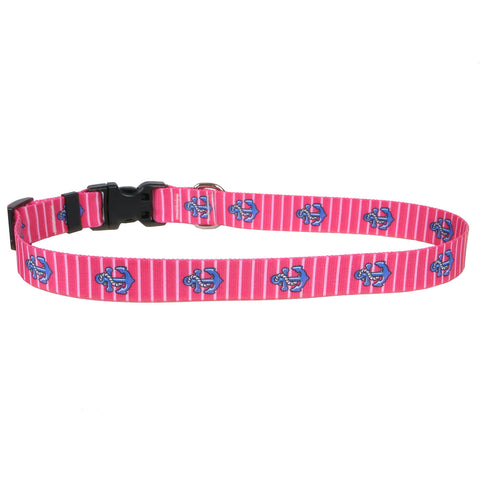 Yellow Dog - Anchors on Pink Stripes Collar