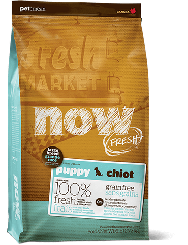 Now! Grain Free Large Breed Puppy Food Recipe