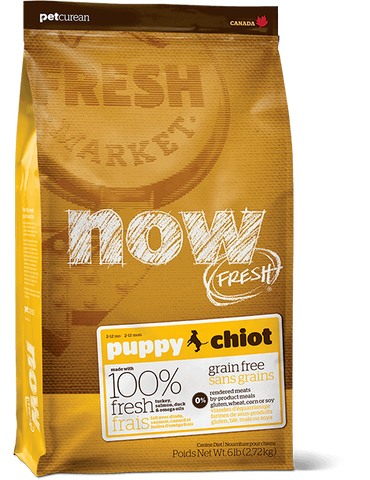 Now! Grain Free Puppy Dog Food Recipe