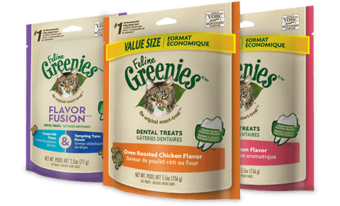 Greenies Original Dental Treats for Cats