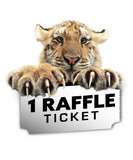 1 Donation Raffle Ticket