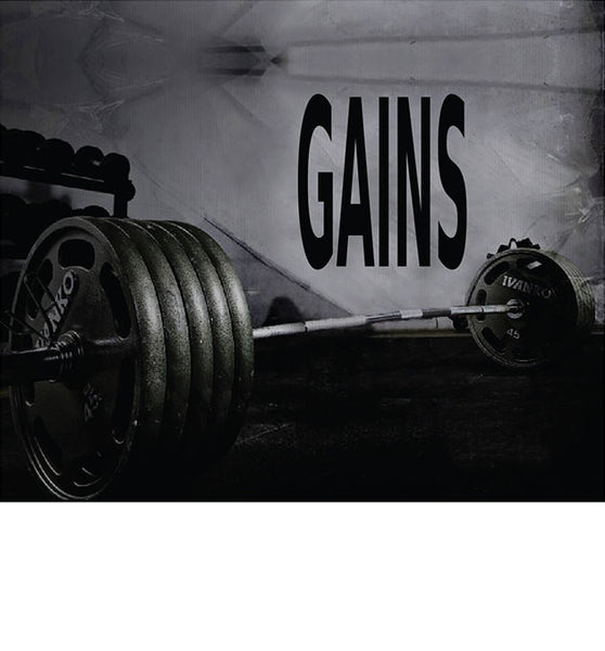 "Fitness Motivation Home Gym Wall Decal - 29"" x 27"" Gains Wall Decal"