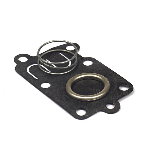 Briggs & Stratton 5021K Diaphragm Kit (DIY Packaged Version of 272538S)