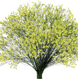 Limonium Yellow - BloomsyShop.com