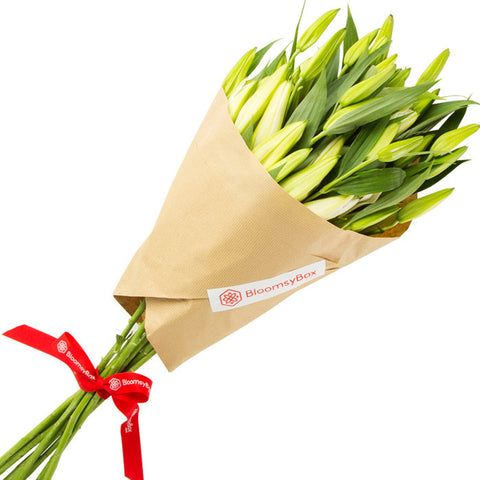 Intensity (Single Variety Hand-Tied Bouquets) - BloomsyShop.com