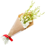 Peaceful (Single Variety Hand-Tied Bouquets) - BloomsyShop.com