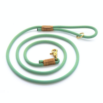 Spearmint Rope Dog Leash - 4'