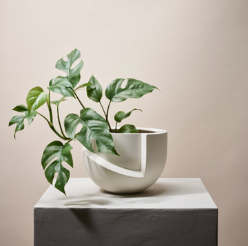 VAYU Tabletop Ceramic Planter / SNOW