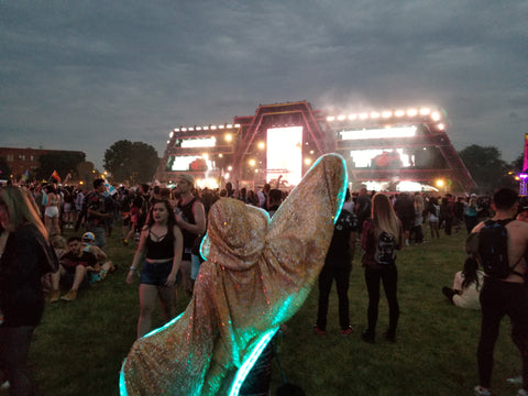 Follow the Firefly through the meadow...it'll lead to Kaskade!