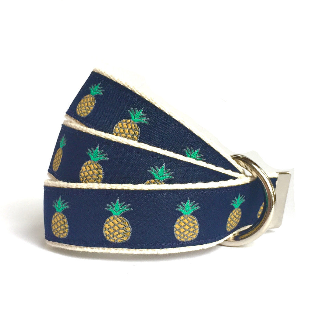 Child Pineapple Belt