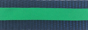 Navy and Green Stripe Dog Leash