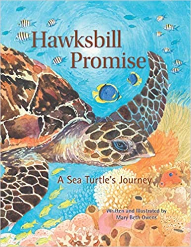 Hawksbill Promise; A Sea Turtle's Journey by Mary Beth Owens