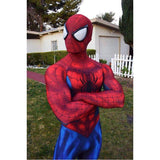 Spiderman Cosplay Halloween Costume Normal spiderman and Black spiderman