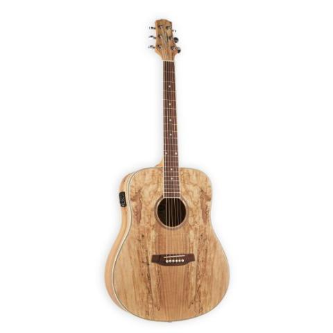 Ashton D26EQ Spalted Maple Dreadnaught Acoustic