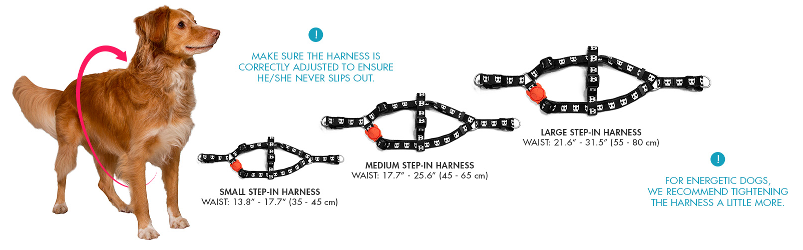 Zee Dog Step-in Harness Size Guide
