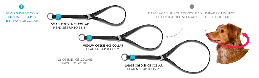 Zee.Dog Obedience Dog Collar Sizes