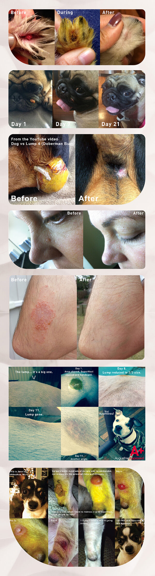 Augustine Approved SuperHeal Before and After
