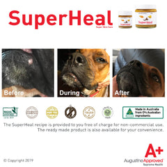 Augustine Approved SuperHeal - Vanillapup Online Pet Store