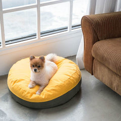 Betters Super Comfy Fleepy Bed - Beds, Betters, Dogs, Latte, Starter Pack - Vanillapup - Online Pet Shop