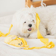 Bite Me Omelette Nose Work Toy - Vanillapup Online Pet Shop