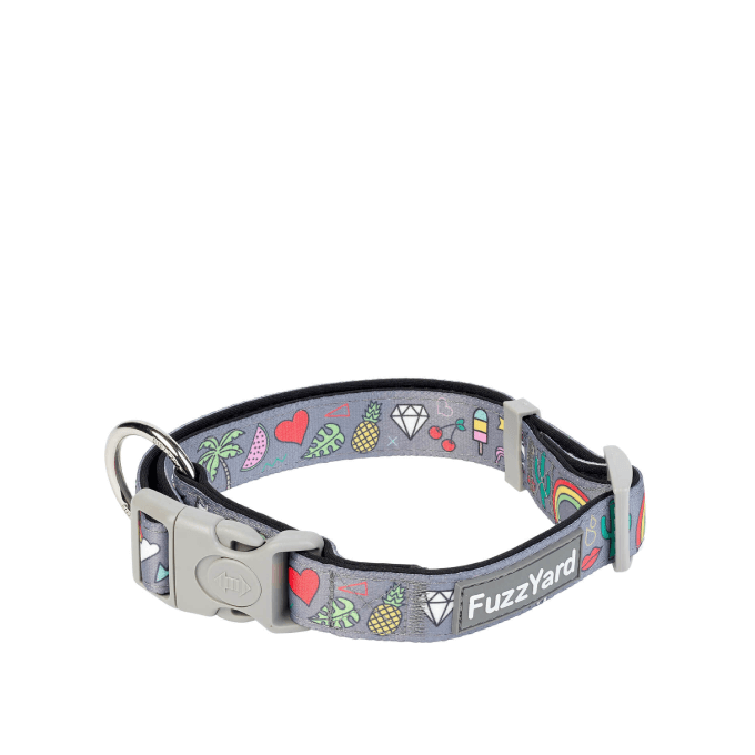 FuzzYard Coachella Dog Collar - Collars, Dogs, FuzzYard - Shop Vanillapup - Online Pet Shop