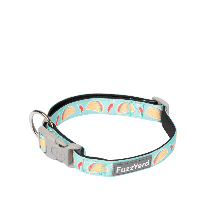 FuzzYard Juarez Dog Collar - Collars, Dogs, FuzzYard - Shop Vanillapup - Online Pet Shop