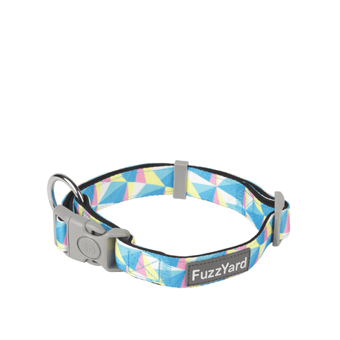 FuzzYard South Beach Dog Collar - Collars, Dogs, FuzzYard - Shop Vanillapup