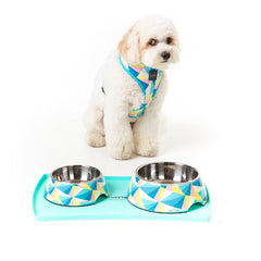 FuzzYard Silicon Teal Feeding Mat with Dog