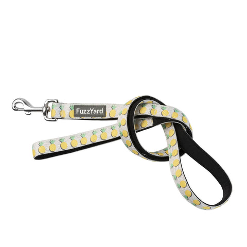 FuzzYard Pina Colada Dog Lead - Dogs, FuzzYard, Leashes, New - Shop Vanillapup
