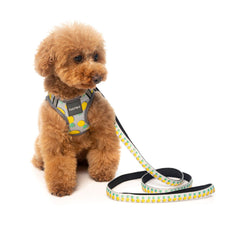 FuzzYard Pina Colada Step-in Harness - Dogs, FuzzYard, Harnesses, New - Shop Vanillapup