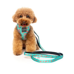 FuzzYard Summer Punch Step-in Harness - Shop Vanillapup Online Pet Shop
