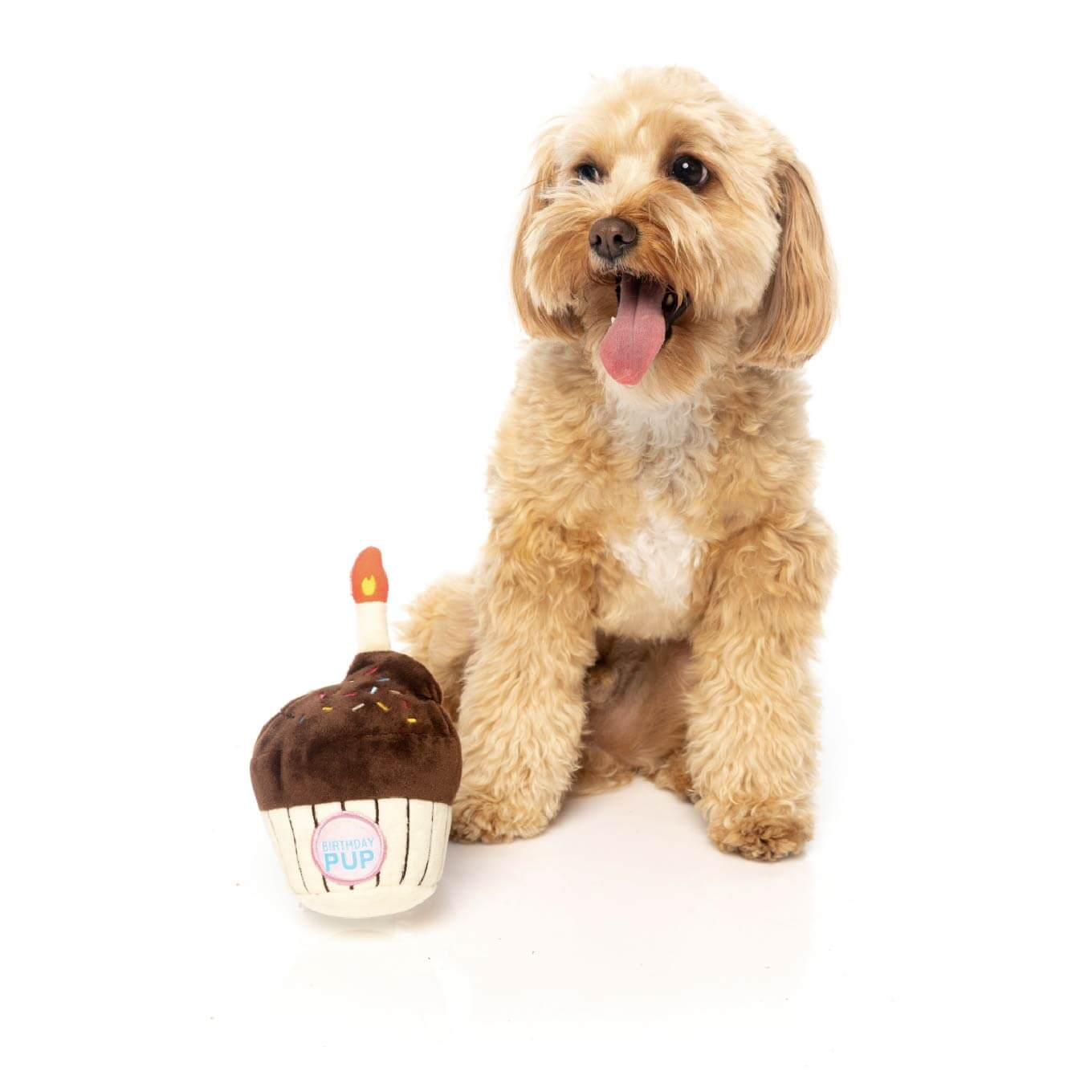 FuzzYard Birthday Cupcake Dog Toy - Dogs, FuzzYard, New, Toys - Shop Vanillapup