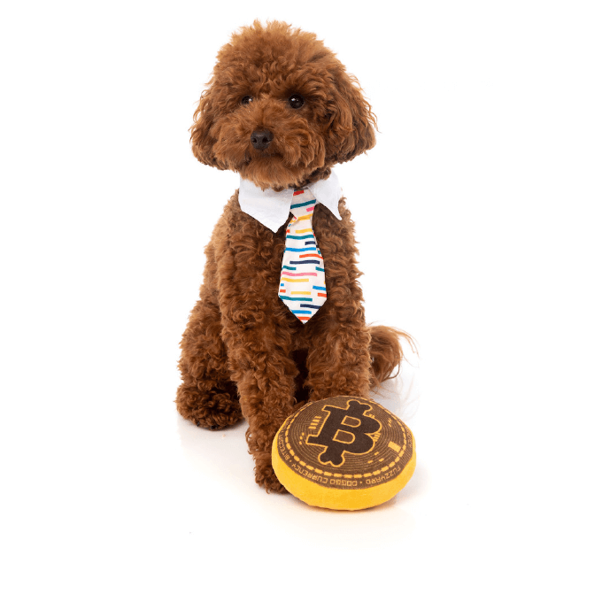 Poodle and FuzzYard Bite Coin Toy