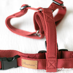 Haqihana Wine Harness - Vanillapup Online Pet Shop