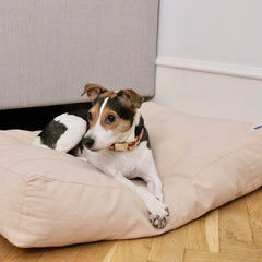 Tadazhi Soft Pillow Bed | Powder - Vanillapup Online Pet Store