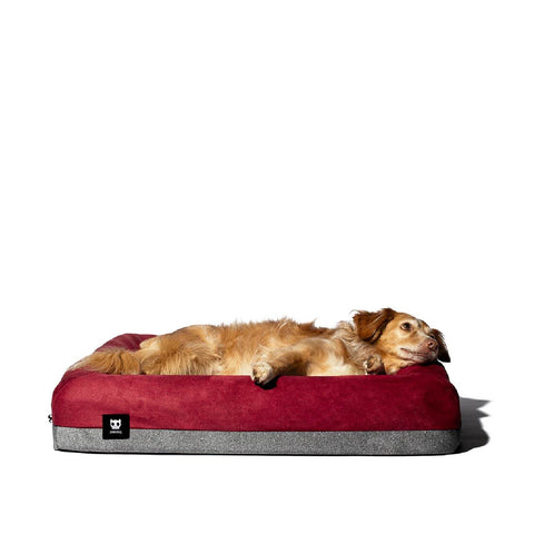 Zee.Dog Logo Bed Cover Only - Beds, Dogs, Zee.Dog - Shop Vanillapup