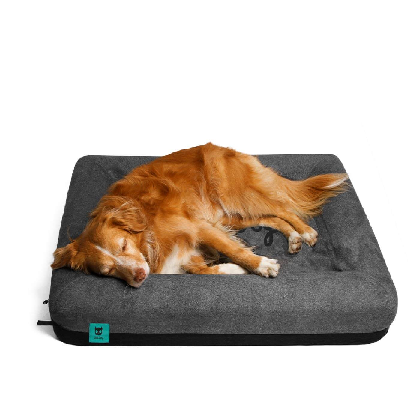 Zee.Dog Logo Bed
