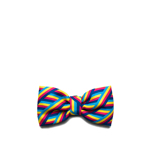 Zee.Dog Bowie Bow Tie - Apparel, Dogs, Zee.Dog - Shop Vanillapup