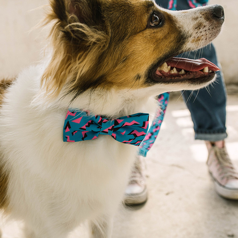 Zee.Dog Crosby Bow Tie - Apparel, Dogs, Zee.Dog - Shop Vanillapup