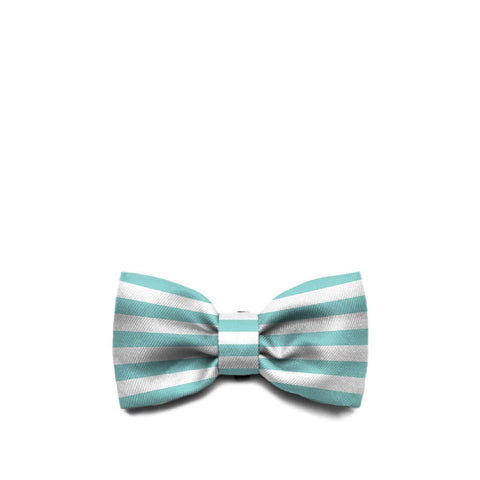 Zee.Dog Florida Bow Tie - Apparel, Dogs, New, Zee.Dog - Shop Vanillapup